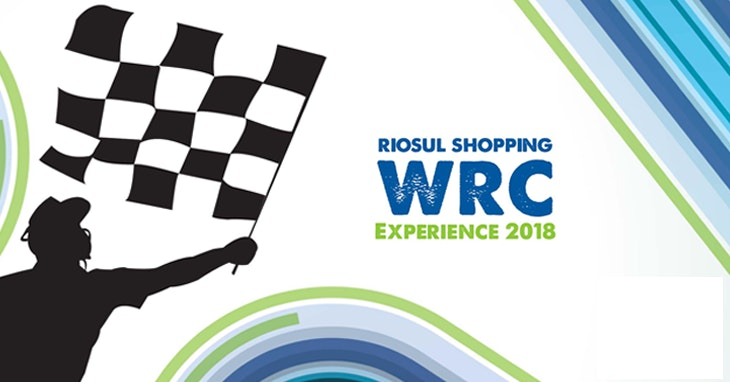 WRC Experience 2018