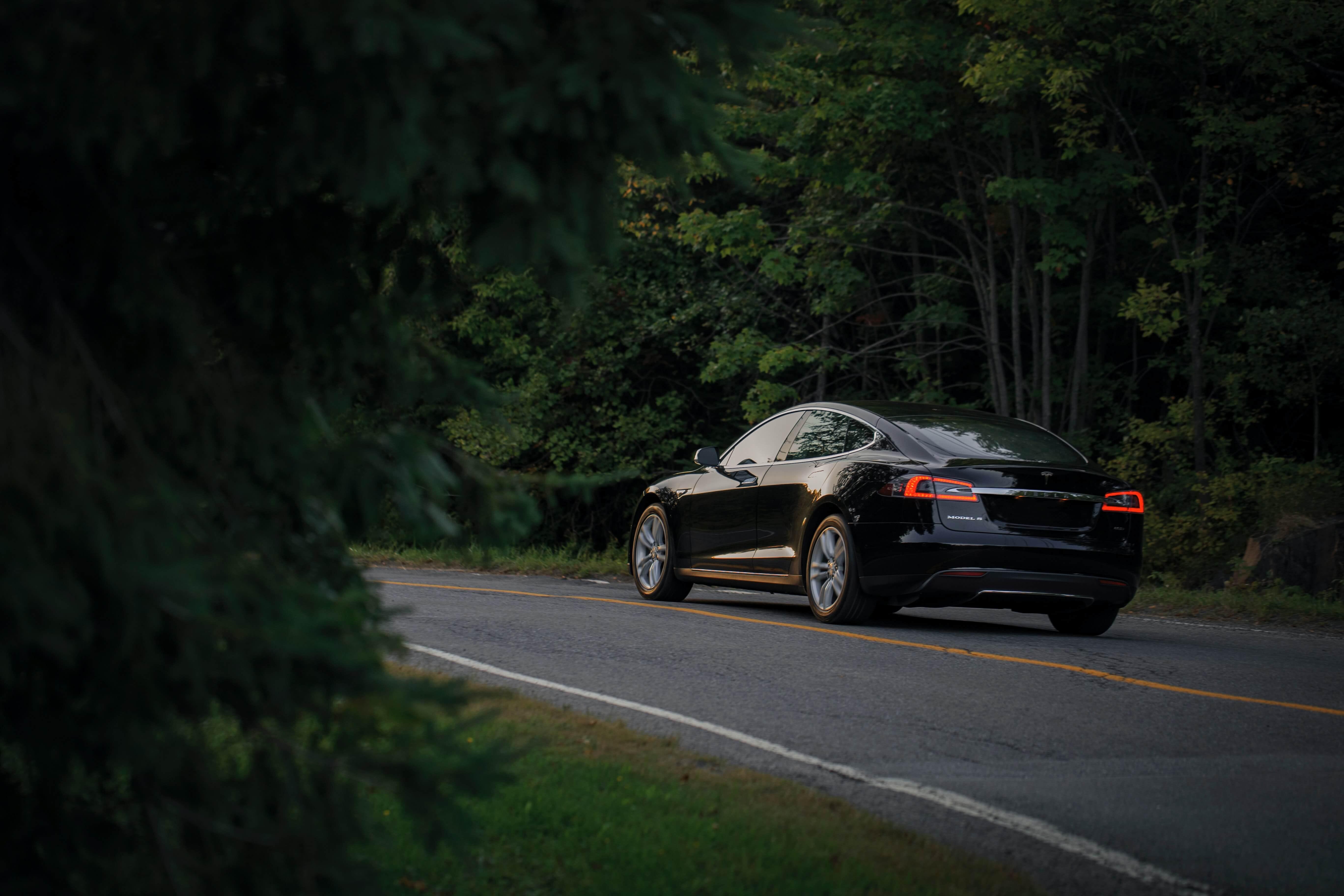 viatura elétrica numa estrada entre o bosque